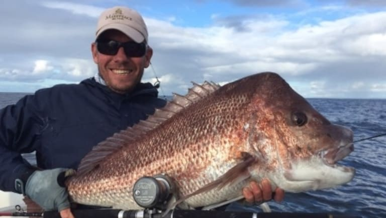 Pink Snapper is up for grabs.