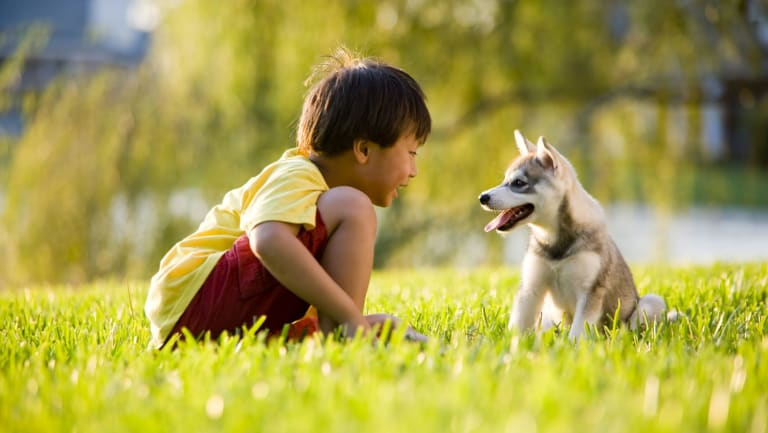 Children who grow up with dogs are less anxious.