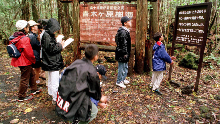 A group of schoolchildren read signs posted in the dense woods of the Aokigahara Forest at the base of Mount Fuji.