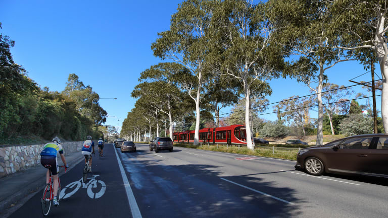 More trees will be uprooted and planted as part of the second stage of light rail.