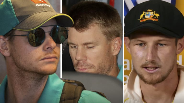 Suspended: Steve Smith and David Warner have been banned for a year, while Cameron Bancroft received nine months.