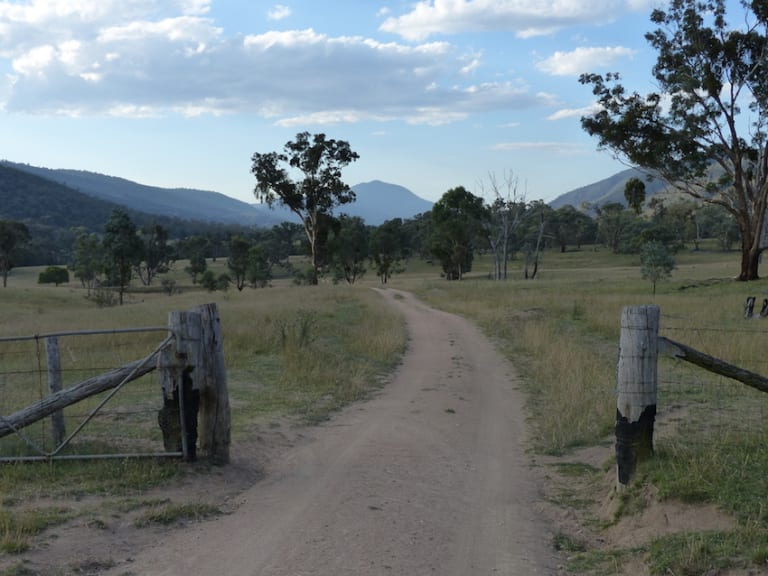 Where in Canberra last week: a view of Mt Tennent from the Naas Valley, south of Tharwa.