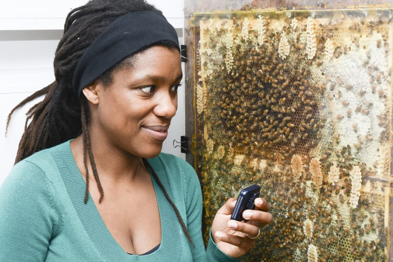 Dr Tanya Latty encourages her students to develop a love of insects.