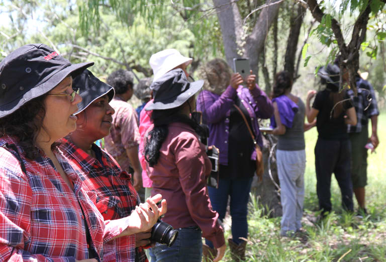 Walalangga students share cultural and environmental knowledge with community elders and local ranger groups, both in and out of the classroom.