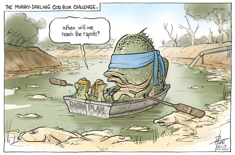 The Canberra Times editorial cartoon for Thursday, January 10, 2019.