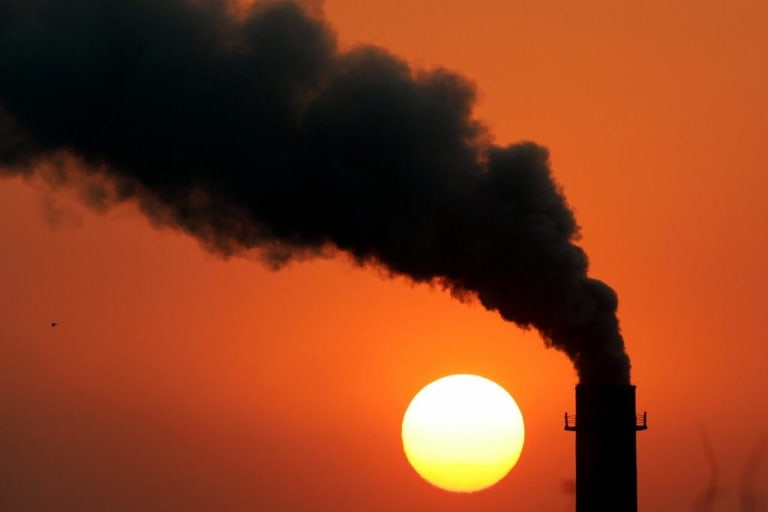 Companies buy carbon credits to act as offsets to reduce their comparative carbon emissions levels.