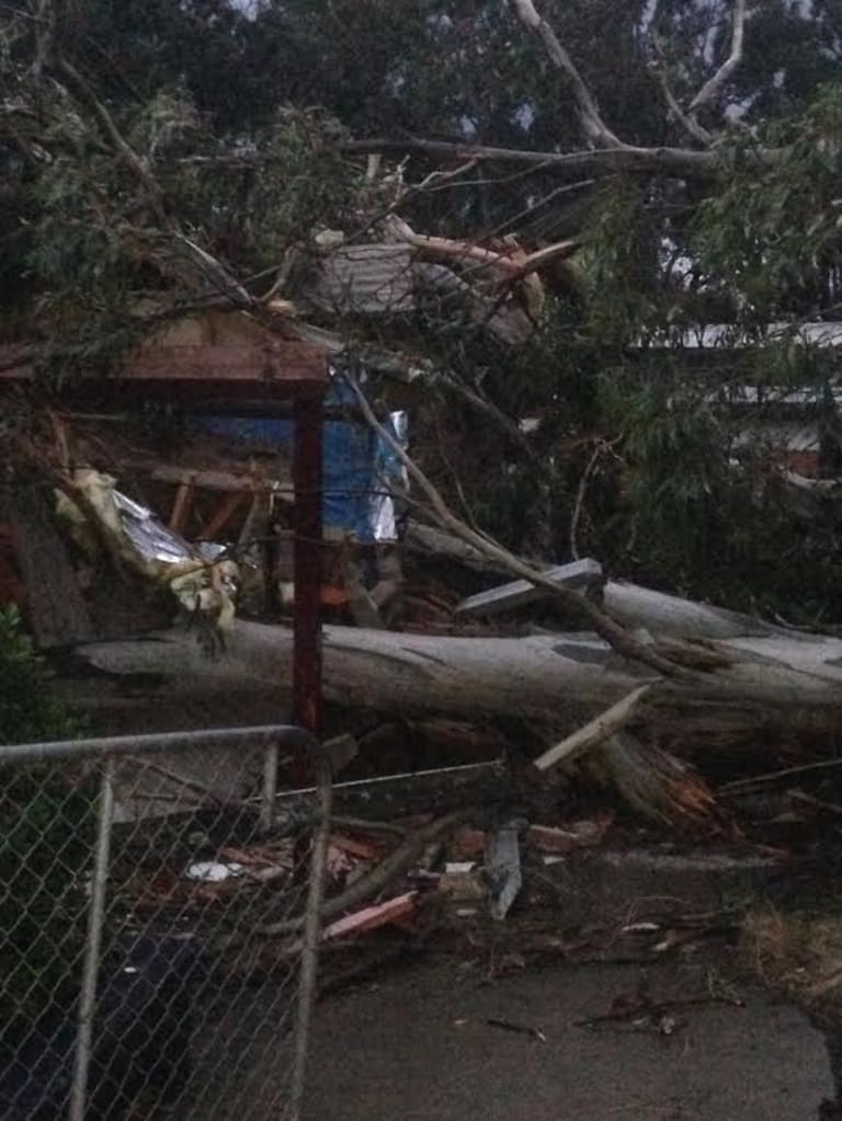 Menzies Creek Primary (pictured) will be closed on Monday after the storm caused significant damage.