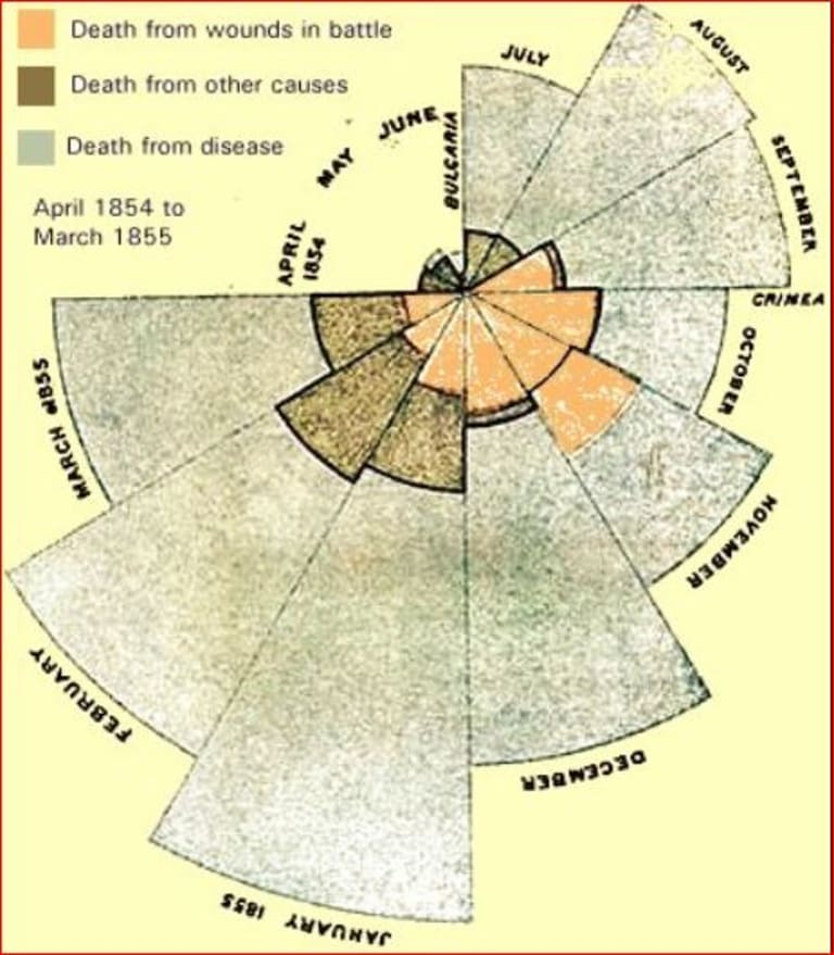 Florence Nightingale used maths and science, such as this polar vector diagram similar to a pie chart,  that showed how many soldiers died in the Crimean War from April 1854 to March 1855.