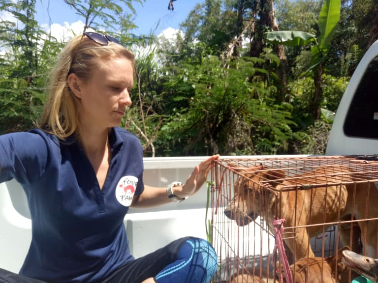 Katherine Polak, from the Four Paws animal-welfare group, which is part of the Dog-Meat Free Indonesia coalition, with a rescued dog.