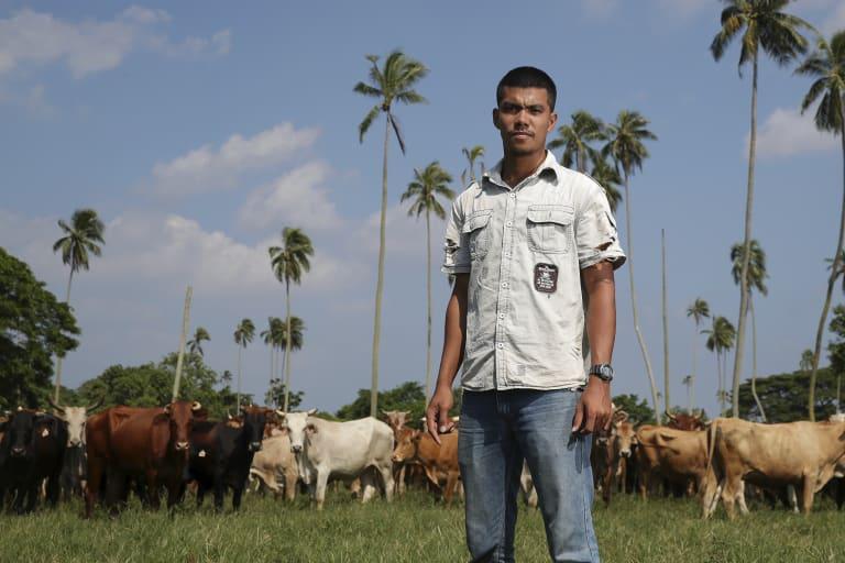 Yango Wilson, the operations manager of Milai Vanuatu cattle farm on Espiritu Santo in Vanuatu.