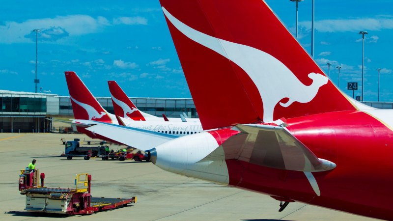 Cargo class: Qantas CEO reveals 'out there' options for ...