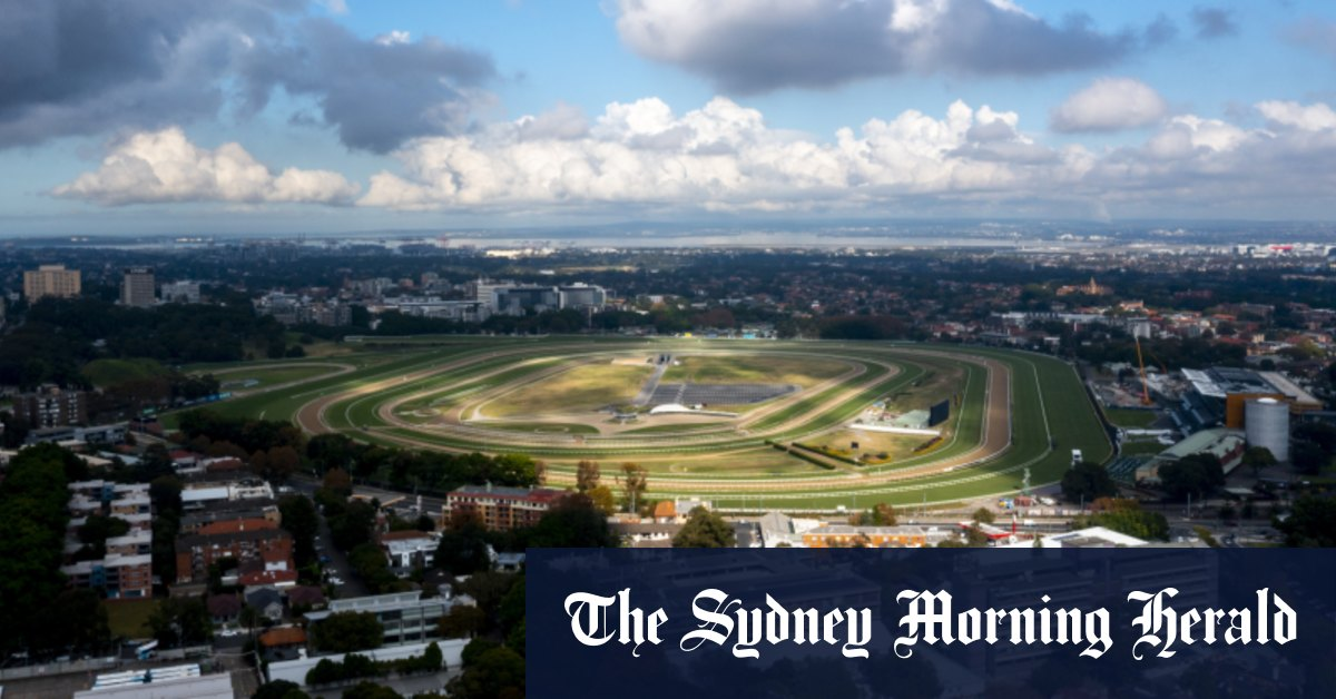 Skydiving in the suburbs: Plans to turn Randwick Racecourse into dropzone