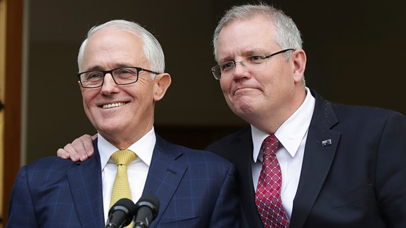 What really happened the week Malcolm Turnbull was knifed