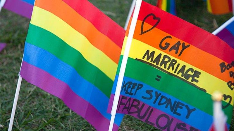 Pro same sex marriage organizations