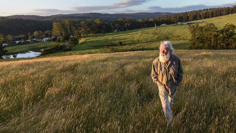 Bruce Pascoe's native grasses