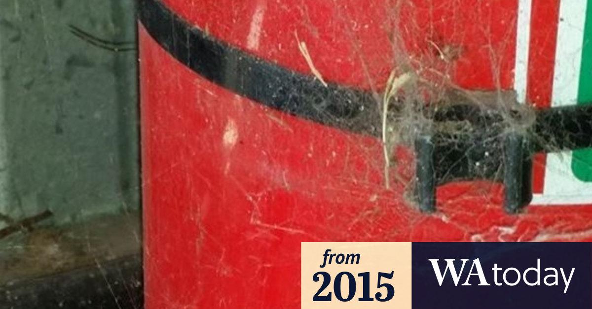 www.watoday.com.au