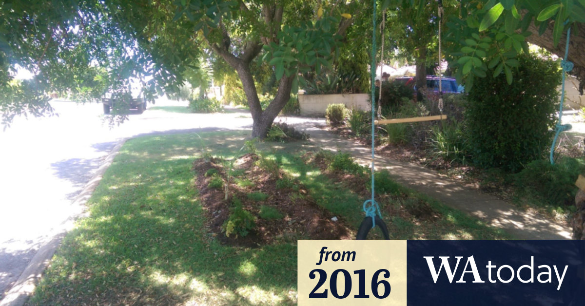 Perth Council Verges Native Plants Vegetables Fake Lawn Do What You Like