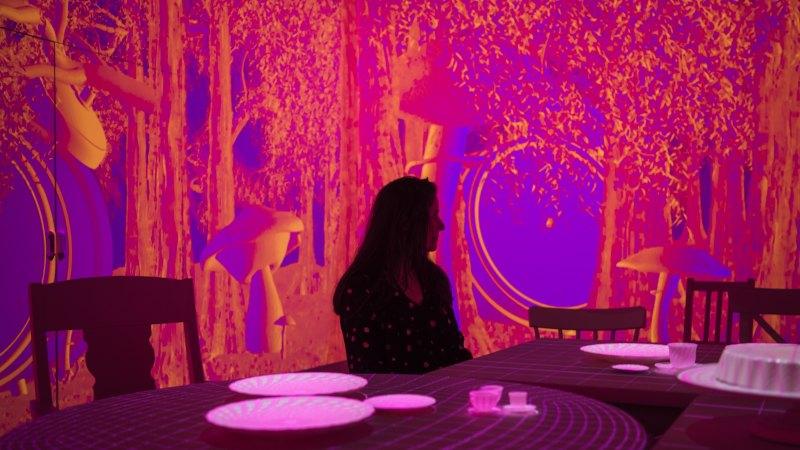 alice in wonderland exhibition review