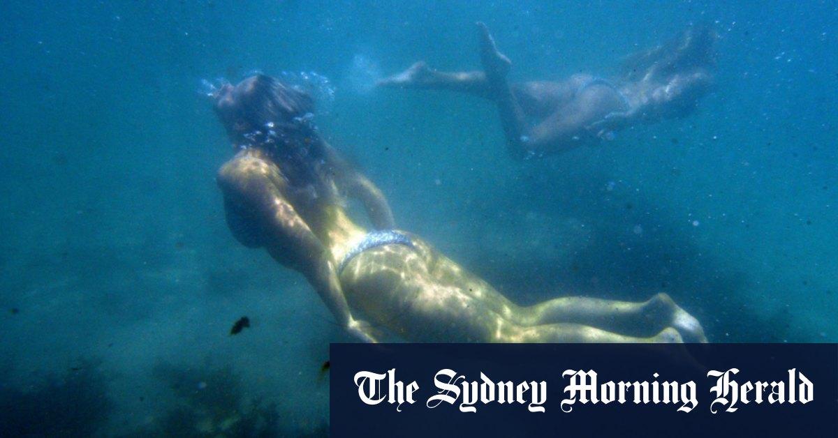 Sydney's COVID summer