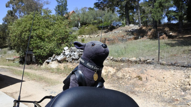 Black Dog Ride Tasmania