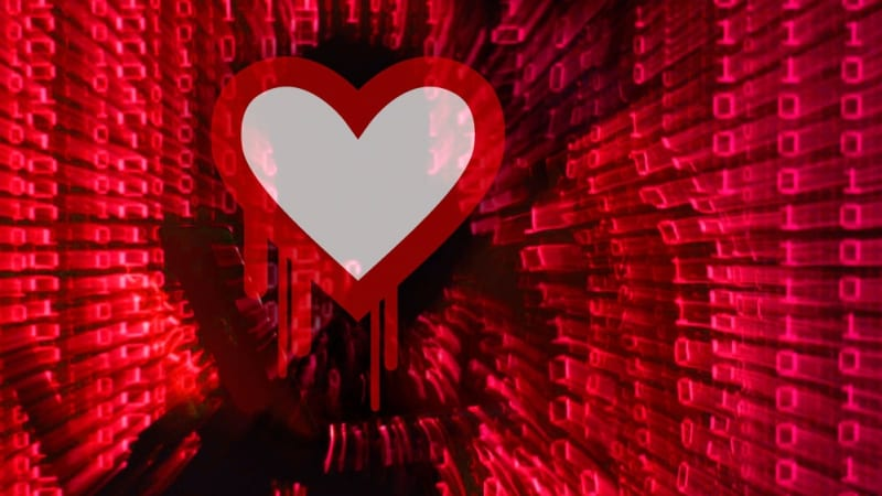 Man who introduced serious 'Heartbleed' security flaw denies he inserted it deliberately