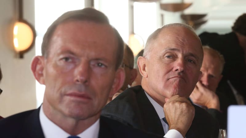 'Don't give Tony Abbott a belting': Malcolm Turnbull ...