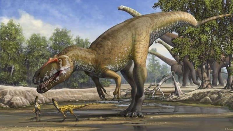 Meet the biggest carnivorous dinosaur ever found in Europe