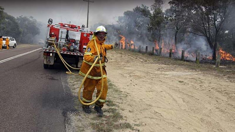 NSW bushfires: live updates