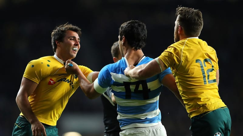 Nick Phipps issued citing commissioner warning for shoving Pumas medic to ground in Wallabies win