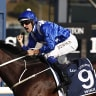 Carnival of highlights as Winx, Waller and Bowman shine again