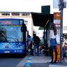 Brisbane's most and least popular bus routes