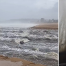 Sydneysiders capture the wild weather across the city
