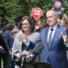 Shorten's hip-pocket hit ahead of Batman byelection tests common sense