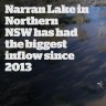Narren Lake in Northern NSW has had the  biggest inflow since 2013