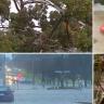 Tens of thousands without power as destructive storms lash Victoria