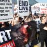 Hundreds protest live export ship due to dock at Fremantle port