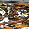 Queensland nets 16,000 weapons under gun amnesty