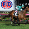 Darren Weir has a vice-like grip on this year's Caulfield Cup