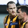 Six banned Essendon Bombers to return, plus top draft pick Andrew McGrath