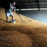 New Indian tariff to hit Australian farmers