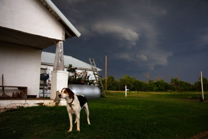 A dog oblivious to the tornadic storm behind it in a mostly abandoned town in Texas.