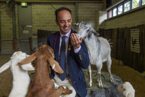 Chief veterinarian Mark Schembri has been working at the show since 2002.