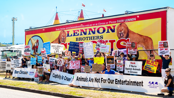 Animal rights protesters blockade Lennon Brothers Circus in Brisbane's south
