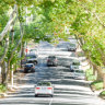 Fed-up Stonnington Council plans bond to save trees
