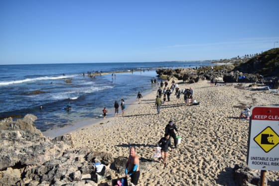 'It's our family ritual': Perth's abalone families hit the beach on first day of season