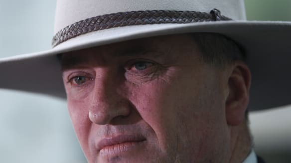 Nationals president slaps down WA Nationals over Barnaby Joyce resign call