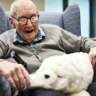Smiles all round as robotic pets calm and delight people living with dementia