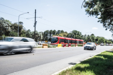The ACT's business, property and architecture groups have banded together in opposition to revised plans to reshape Nortbourne Avenue and Federal Highway