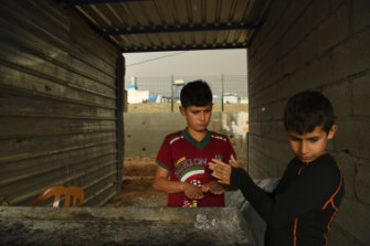 As winter approaches, Mustafa, 10, and Ahmed, 7, warm their hands over a barbecue at a kebab shop in Basirma refugee camp in Iraqi Kurdistan.