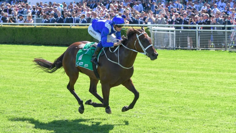 Winx adds yet another victory to her resume last week.